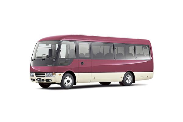 ROSA 30P